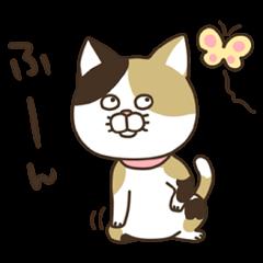 nananeko3