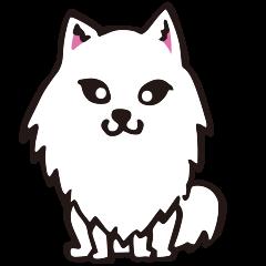 可愛狐狸狗