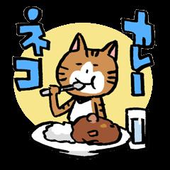 喜歡咖喱的貓