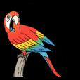 LINEスタンプランキング(StampDB) | 笑う門に動物