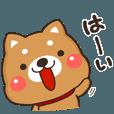 LINEスタンプランキング(StampDB) | 頑張る愛犬!私の柴ちゃん