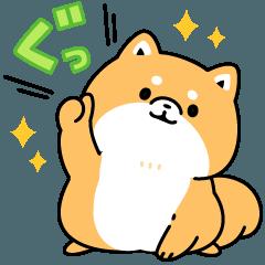 LINEスタンプランキング(StampDB) | もふ柴うごく!