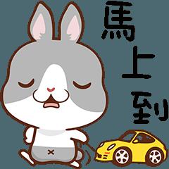LINEスタンプランキング(StampDB) | Great Bunny