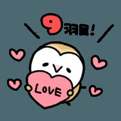 メンフクロウのまめふくちゃん9【LOVE編】