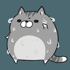 LINEスタンプランキング(StampDB) | ボンレス猫 in さま?