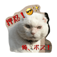 LINEスタンプランキング(StampDB) | 押忍、おれボス!
