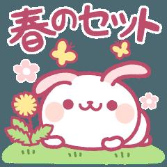 春のセット【たれ耳うさぎ】