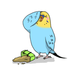 Parakeet's my home! sticker #161489