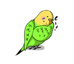Parakeet's my home! sticker #161492