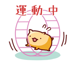 Cute animals that can be used every day sticker #240525