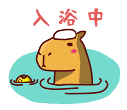 Cute animals that can be used every day sticker #240533