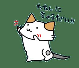 [CAT]KAKEHIRORIN[CAT] sticker #242880
