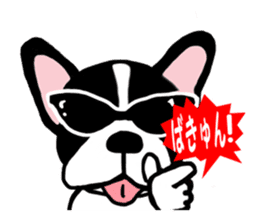 frenchbulldog P-chan sticker #258845