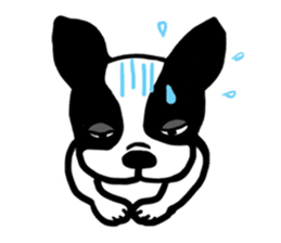 frenchbulldog P-chan sticker #258861
