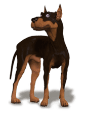 BILLY the dog sticker #258949