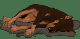 BILLY the dog sticker #258951