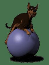 BILLY the dog sticker #258972