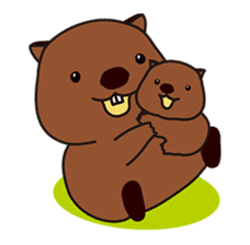 This is cute Wombat's Line Stamps! sticker #267470