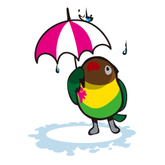 Masked lovebird & Toco Toucan