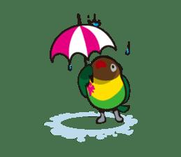 Masked lovebird & Toco Toucan sticker #269905
