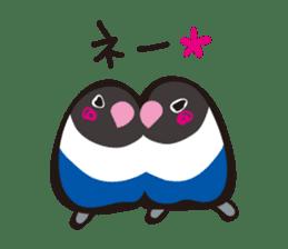 Masked lovebird & Toco Toucan sticker #269944