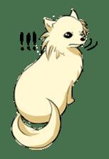 Long Coat Chihuahua sticker #270173