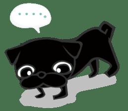 Black Pug DOM sticker #271106