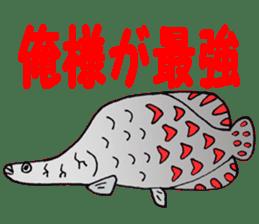 FISH shop sticker #273077
