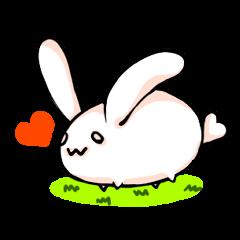 Heart Tail Rabbit