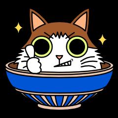 Bowl in cat