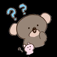 Familiar koala