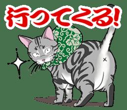 Cat American Short hair sticker #286436