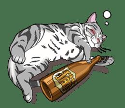 Cat American Short hair sticker #286439