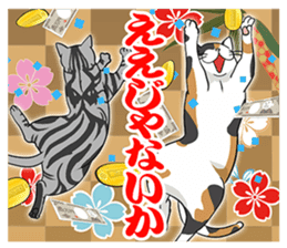 Cat American Short hair sticker #286462