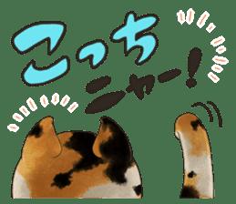 Japanese Festival sticker #286878