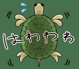Japanese Festival sticker #286882