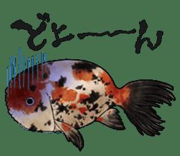 Japanese Festival sticker #286885