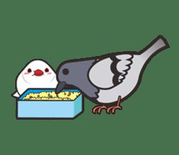 Miss Lovebird-Cute Bird in Valentine sticker #290606