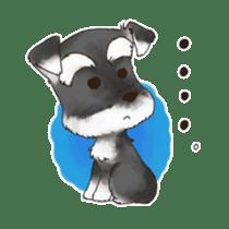 "Miniature Schnauzer ""MOMO"" sticker #294438"