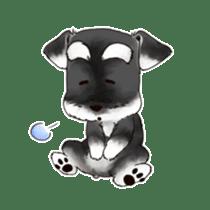 "Miniature Schnauzer ""MOMO"" sticker #294439"