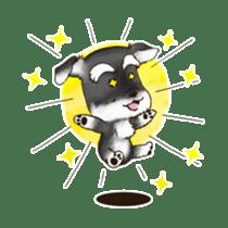 "Miniature Schnauzer ""MOMO"" sticker #294441"