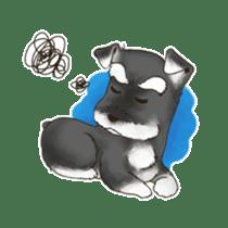 "Miniature Schnauzer ""MOMO"" sticker #294443"