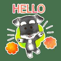 "Miniature Schnauzer ""MOMO"" sticker #294445"