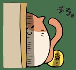 TAMA Nyanko sticker #297628