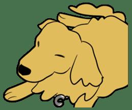 Chobi the GoldenRetriever sticker #303106