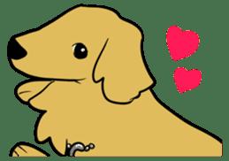 Chobi the GoldenRetriever sticker #303108