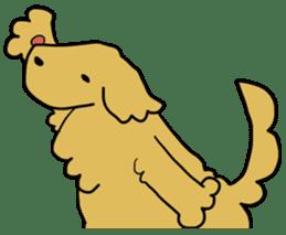 Chobi the GoldenRetriever sticker #303121