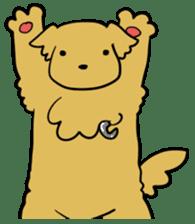 Chobi the GoldenRetriever sticker #303122