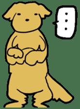 Chobi the GoldenRetriever sticker #303142