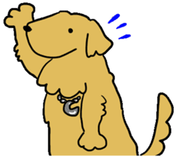 Chobi the GoldenRetriever sticker #303144
